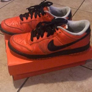 DS Nike Dunk Low Holland Edtion